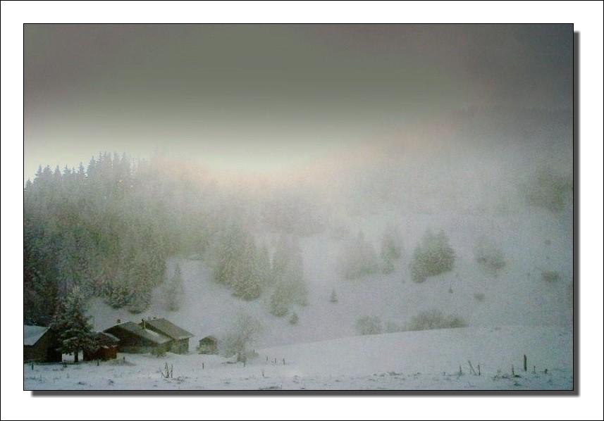 Ce matin au Col du Feu ( près de Thonon les bains )