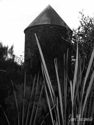 Ce moulin...