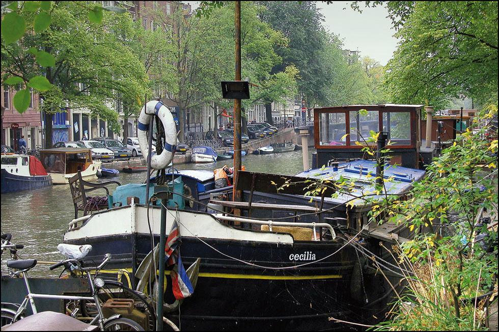 Cecilia im Amsterdamer Regen