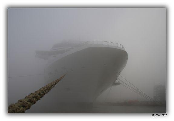 Celebrity Solstice im Nebel