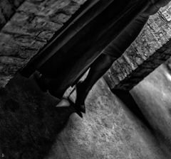 cellar.stage.sfumato