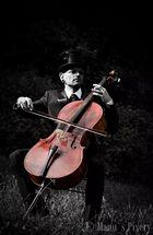 Cello (rot)