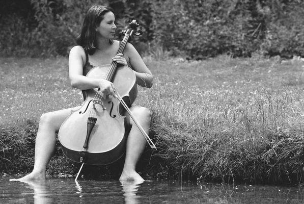 cello sw