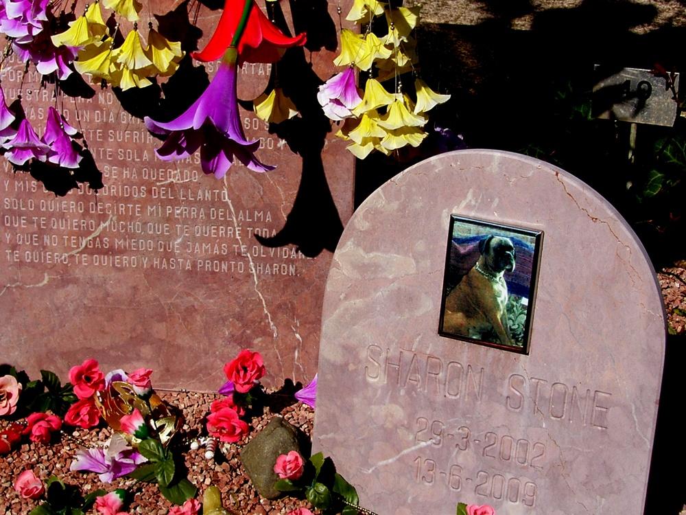 Cementerio de animales en Barna