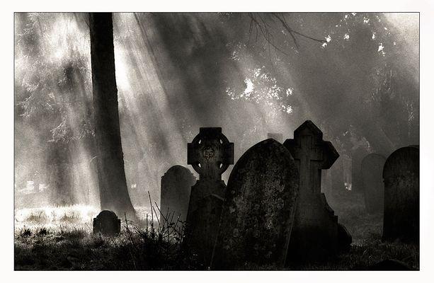 Cemetery, Hill Lane, Southampton. (Reload: Scan vom Negativ)