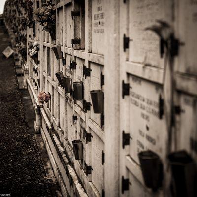 Cemitério dos Prazeres 6