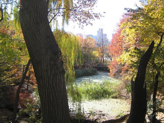 Central Park Herbst