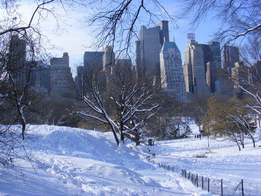 Central Park im Schnee