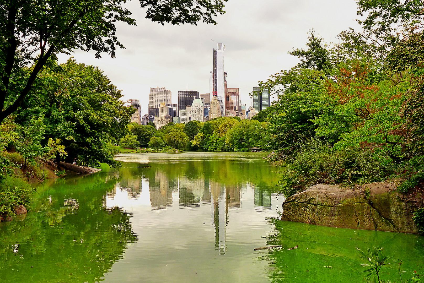 Central Park Impressionen 1