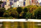 Central Park Impressionen 2
