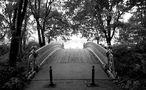 Central Park s/w von Sven Dahl
