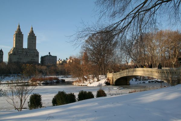 Central Park - Winter Episode
