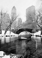 Central Park - Winterlandschaften