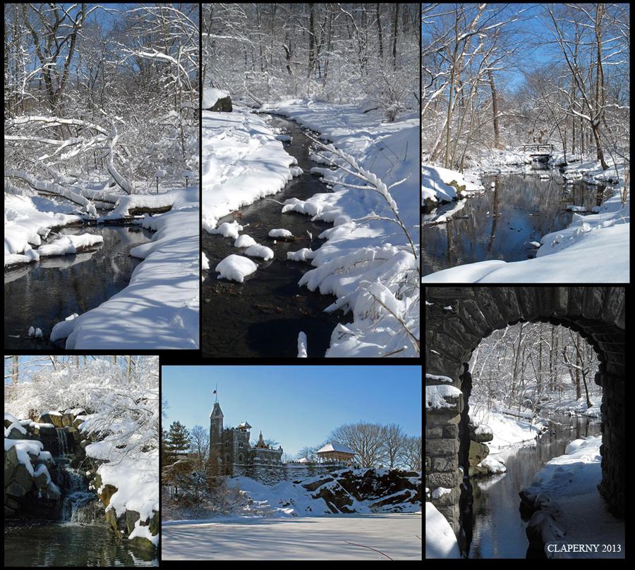Central Park's Winter Wonderland #2