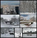Central Park's Winter Wonderland