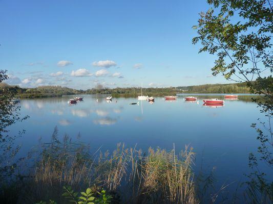 Cepoy, le lac