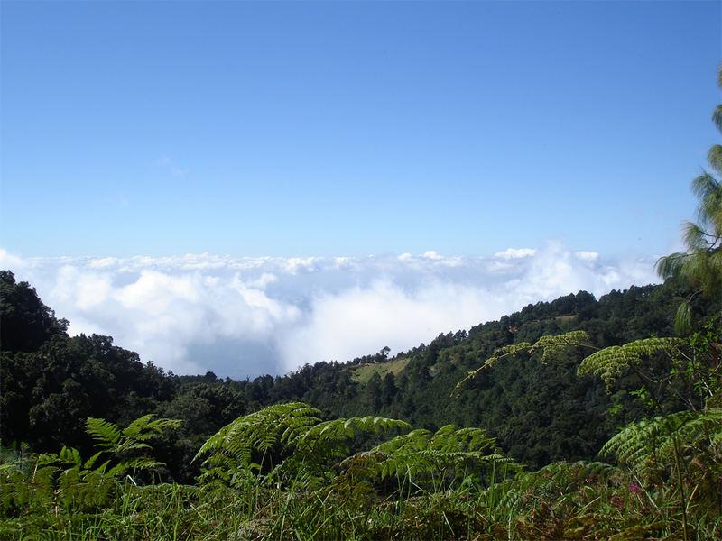Cerro el Pital : 2730 mtros sobre el Mar : El Salvador
