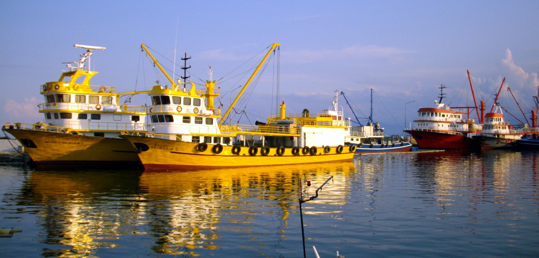 César GHAOUTI  Port Sinop, Turquie