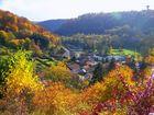 c'est chez moi, mon petit village en forêt