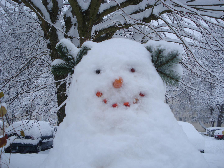 cet hiver