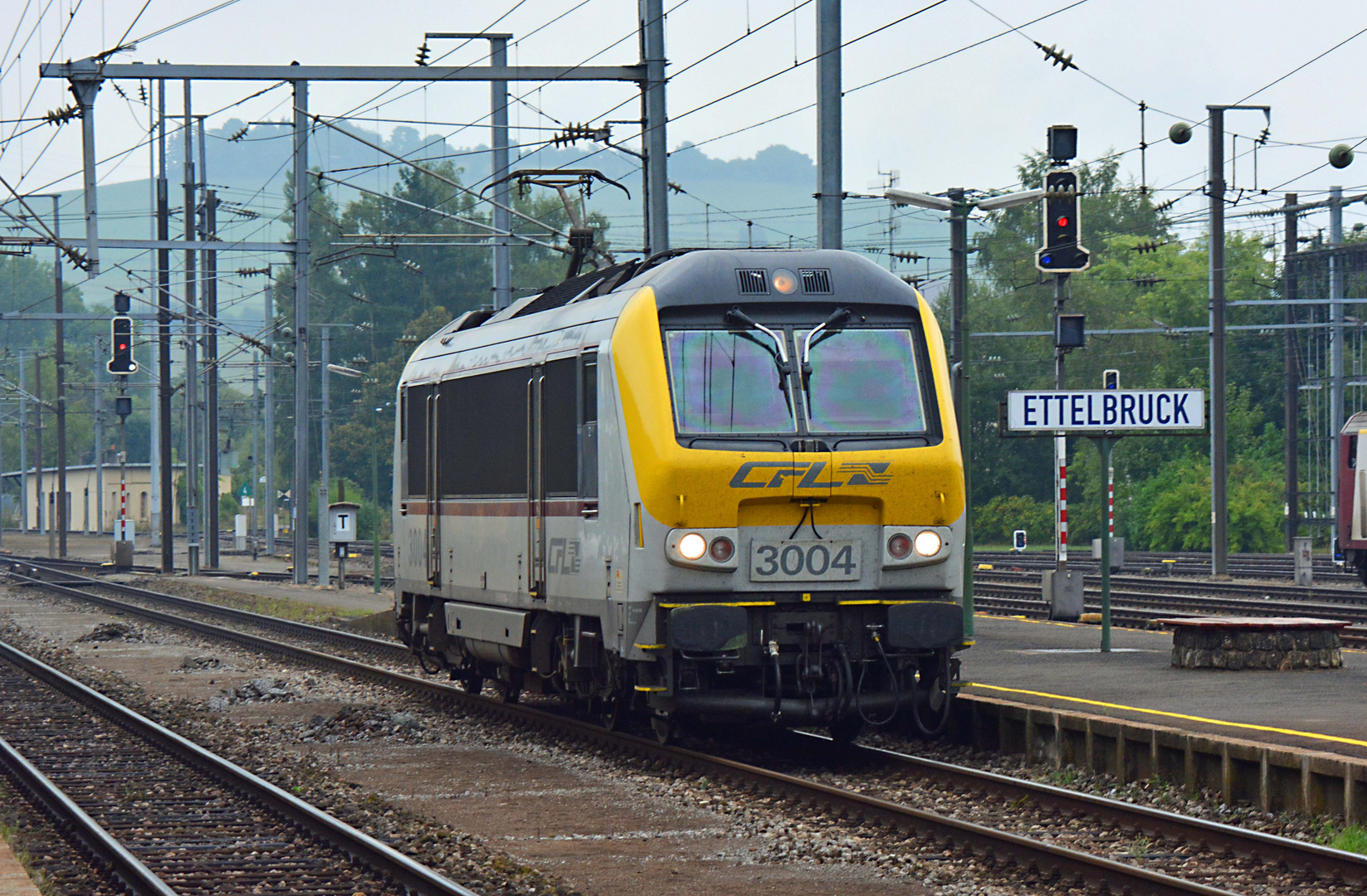 CFL 3004.