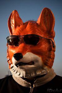 C.Fuchs -foxphoto-