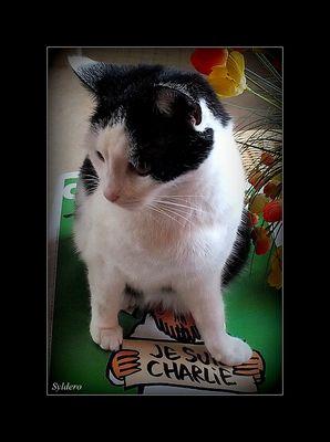 Chacha est Charlie