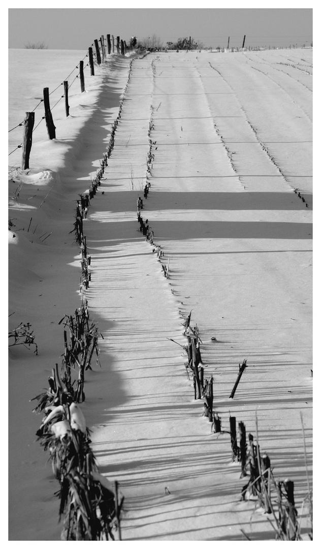 Champ de neige2