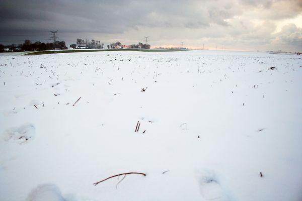 champ plein de neige