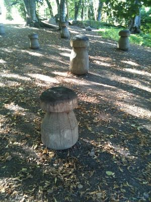 champignon en bois