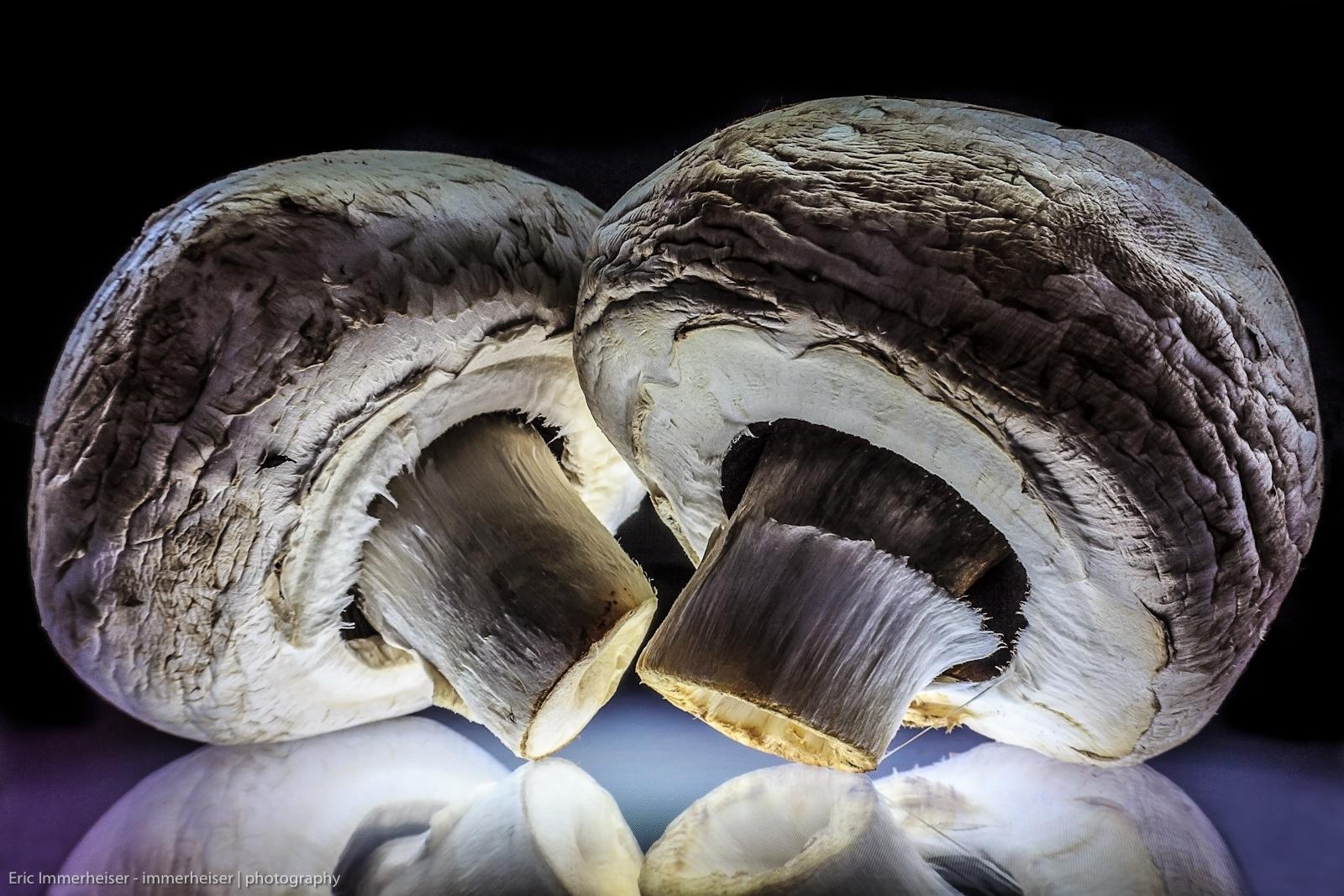 Champignons | mushrooms