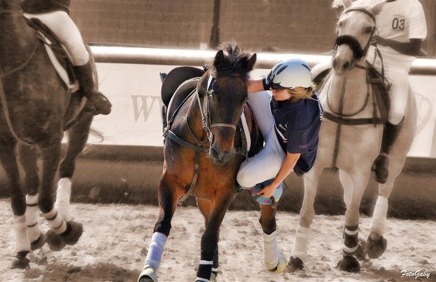 Championnats de France de Horse Ball / Bertille