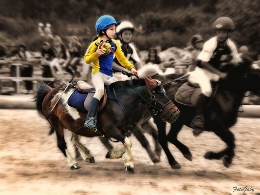 Championnats de France de Horse Ball / Manon