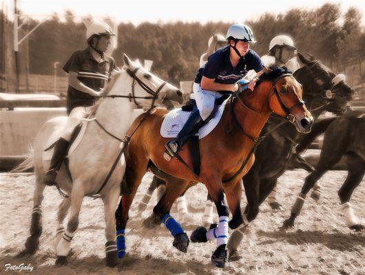 Championnats de France de Horse Ball / Paul (2)