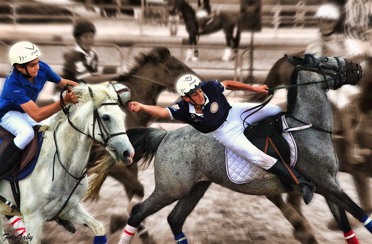 Championnats de France de Horse Ball / Romain photo et ...