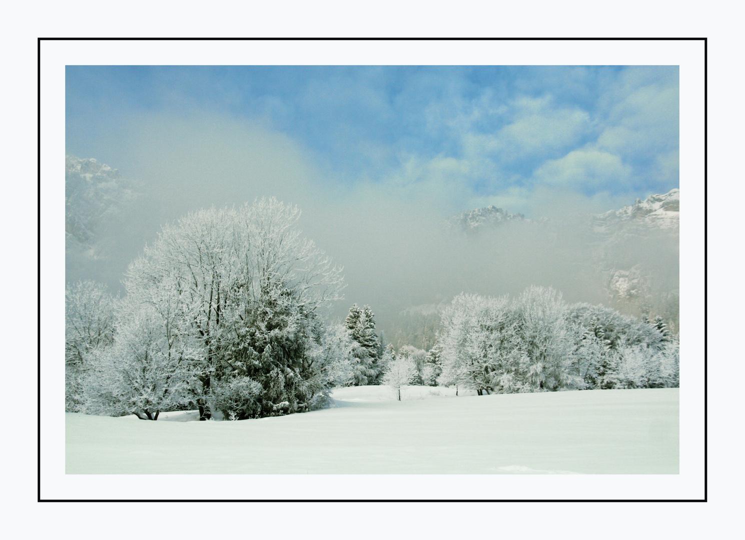 champs en hiver
