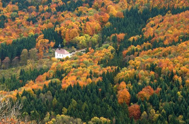 chapelle en forêt noire