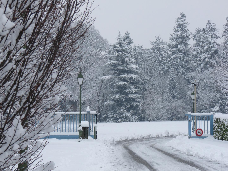 CHAPONNAY (Rhône) - France - Image hivernale