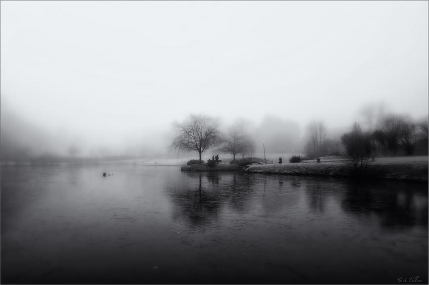 Charlottensee im Nebel