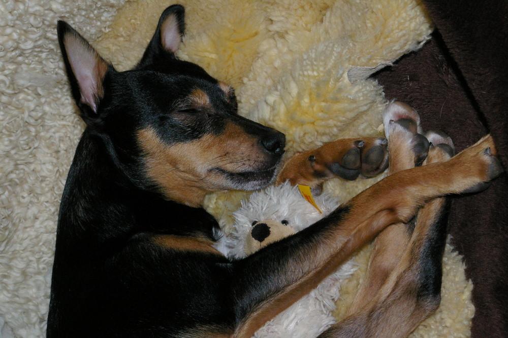 Charly mit seiner Schnullerbacke