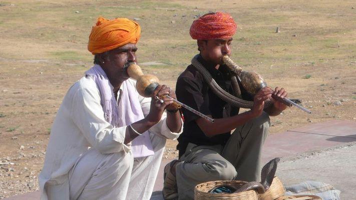 Charmeurs de serpent à JAIPUR