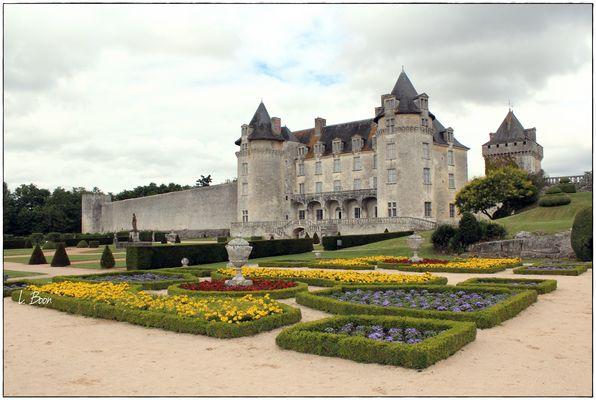 Chateau de la Roche Courbon.