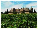 Chateau de Ripaille ( près de THONON LES BAINS )