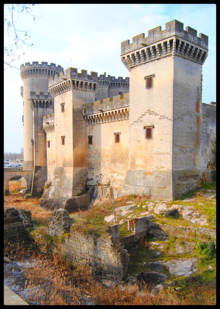 Chateau de Tarascon (13)
