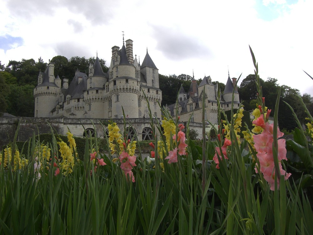 Chateau d'Ussé (37)