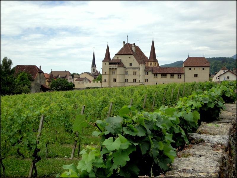 Chateaux d`vin;Neuchatel;CH