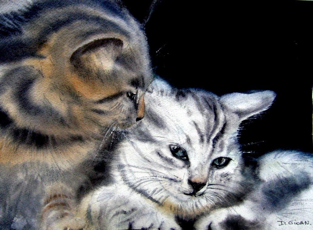 chats à l'eau