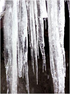 che freddo fa !?