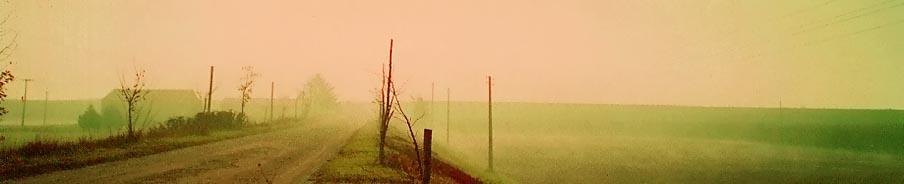 che nebbia confonde in silenzio