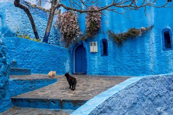 Chefchaouen - die Blaue Perle Nord-Marokkos